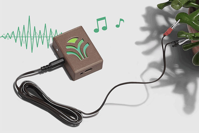 You can now listen to music generated by your houseplants