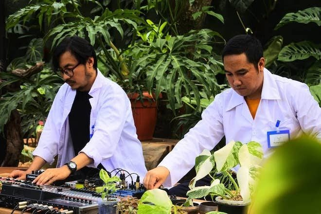 Bottlesmoker announce their fifth album 'Konser Plantasia' after playing music for plants