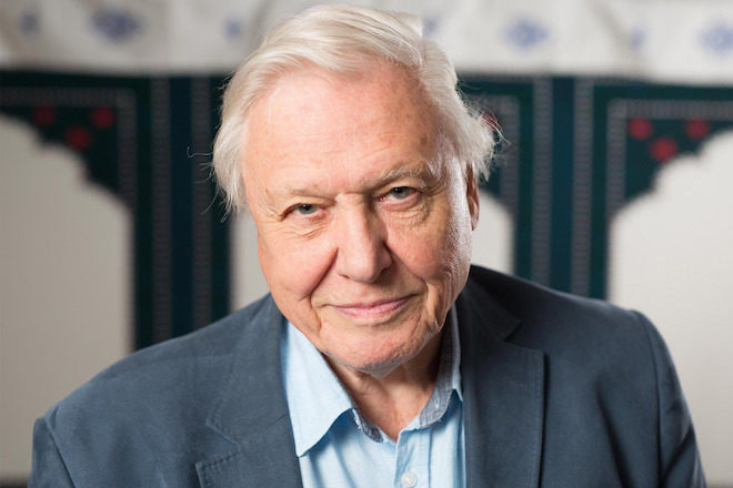 Hear David Attenborough's global music collection